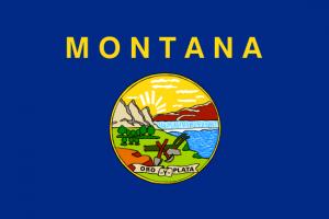 montana-lemon